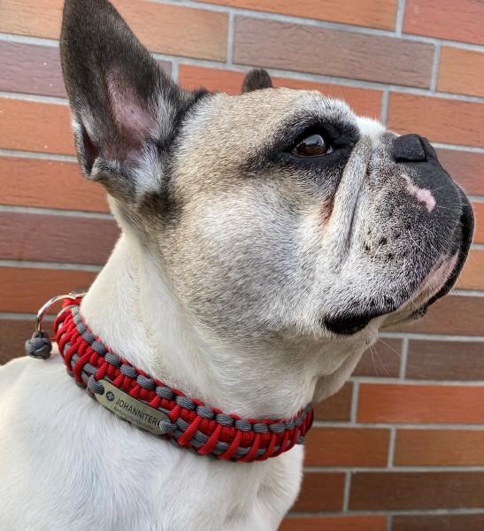 Individuelles Paracord Hundehalsband oder Leine