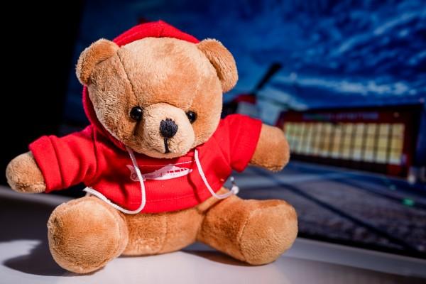 Teddy Luftrettung