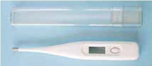 Digital-Fieberthermometer Standard